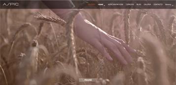 Proyecto Video + Website